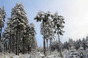 winterlandschap-auersberg